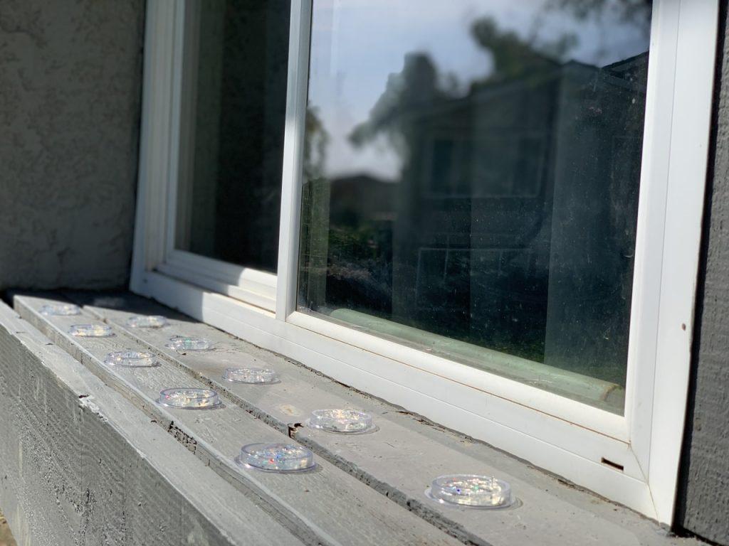 gel proti holubom na oknách